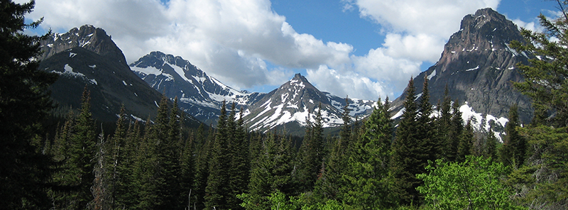 Mountains and trees in Glacier National Park